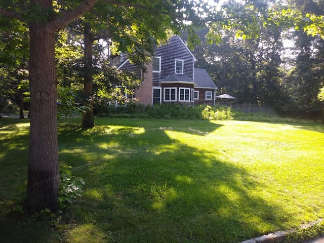 Side view of house with 0.5 acre corner lot. Perfect for outdoor games!