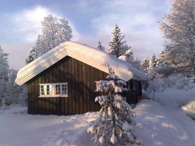 """""""Knatten"""" family cottage"""