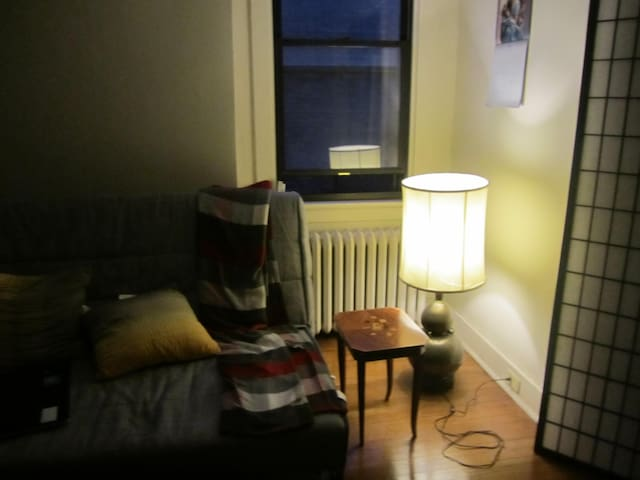 Comfortable ikea couch double bed flats for rent in for Ikea pittsburgh pennsylvanie