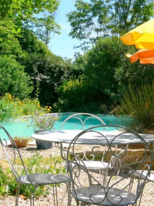 piscine 10x5m avec petite cascade et fleurie