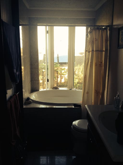 Share this bathroom with an Awesome tub and french windows