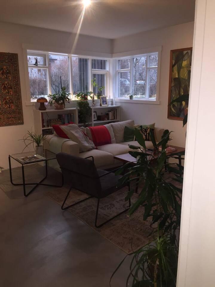 Cosy apartment in Vesturbær