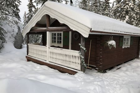 Cozy cabin in cross country paradise