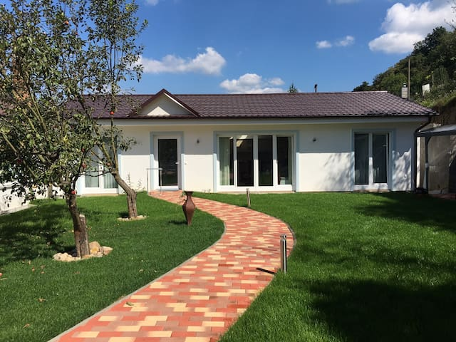 Vocation House by Health Spa Piestany - Banka - Vacation home