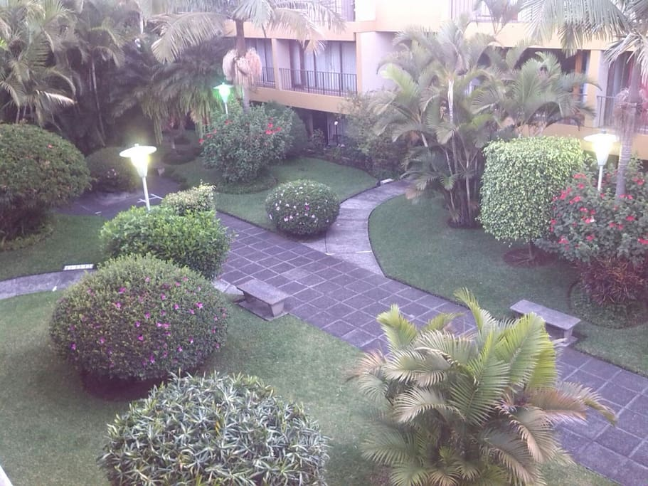 This is the view of the garden from the balcony in the first floor of the apartment