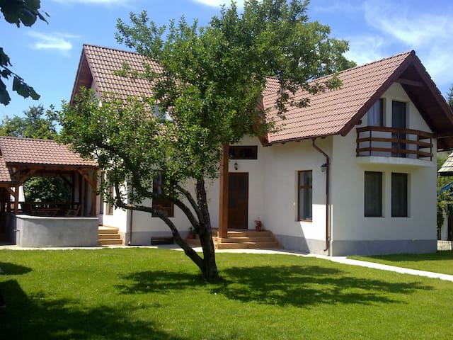 Dancs Ház - Covasna - Dům