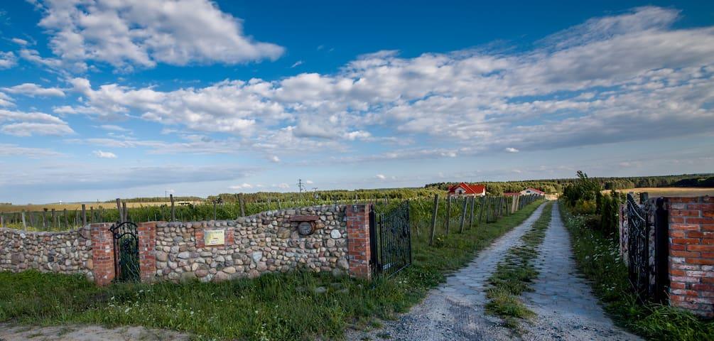 Winnica Mozów Agroturystyka - Mozów - Gästhus