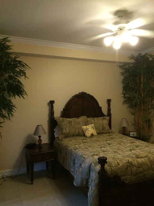 Master bedroom with Queen bed. Plenty of room with private bath. You also get your own patio door to the lanai