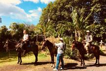 Horseback riding to the San Ramon Waterfall