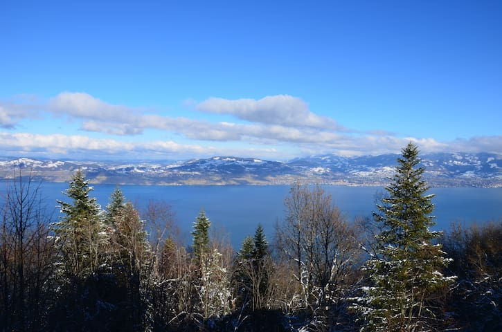 Chalet with extraordinary view on Leman Lake - Thollon-les-Mémises - Chalet