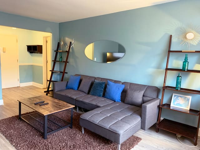 2 Bedroom Apt - Downtown Mid Century Modern Condo