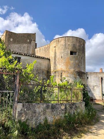 Borgo Alto Giardino