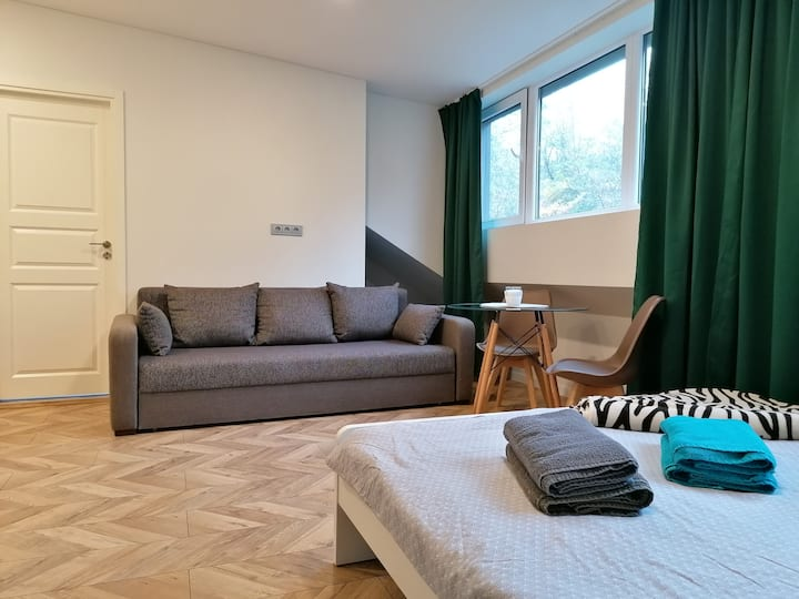 Julia's Studio Apartment in Kaunas Center