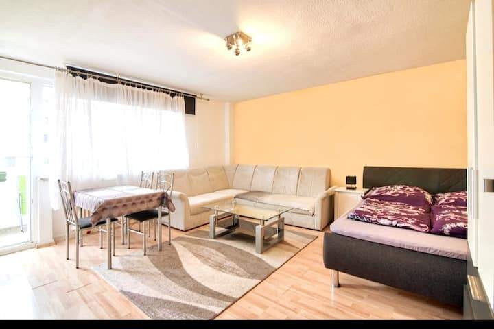 Comfortable Homly  Apartment