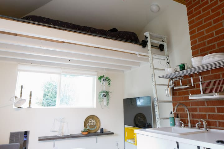 15' ceiling, studio, loft bd, kitcn