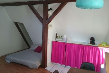 Jolie studio au coeur de la Petite France - Strasbourg