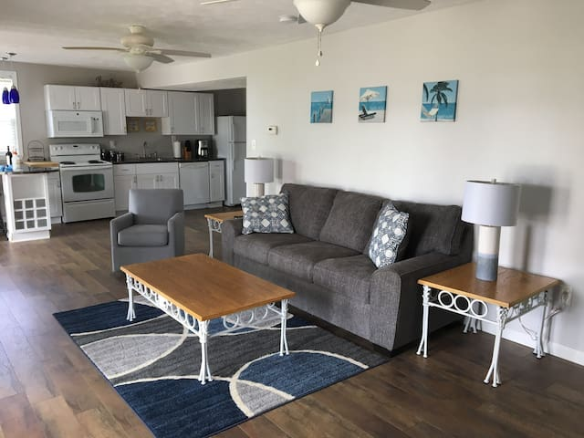 Newly Remodeled 2Br/1Ba Lake View Apartment FLR 1