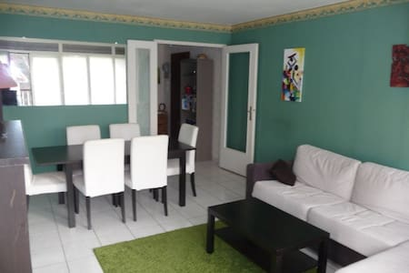 BEL APPARTEMENT PROCHE PARC ASTERIX/ROISSY/PARIS - Survilliers - 公寓