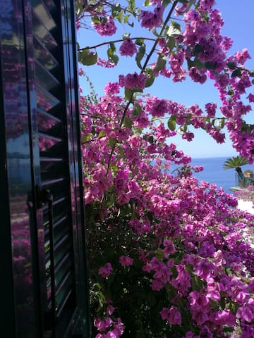 Villino vista mare di fronte Portofino-Luchihome