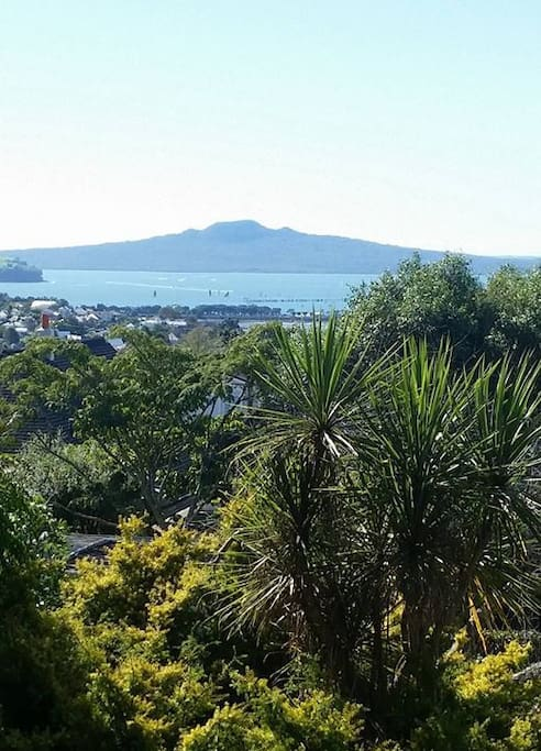Rangitoto island view from apartment