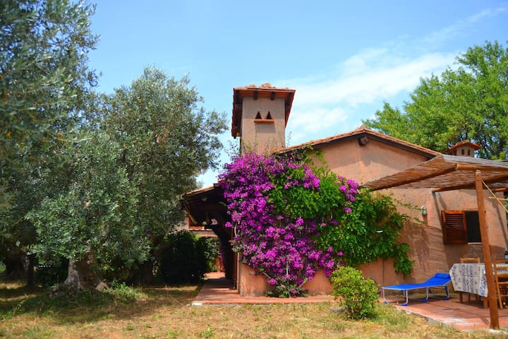Charming farmhouse with stunning views over the Tuscan sea from the big garden