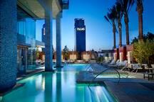 Sleek modern Palms Place pool