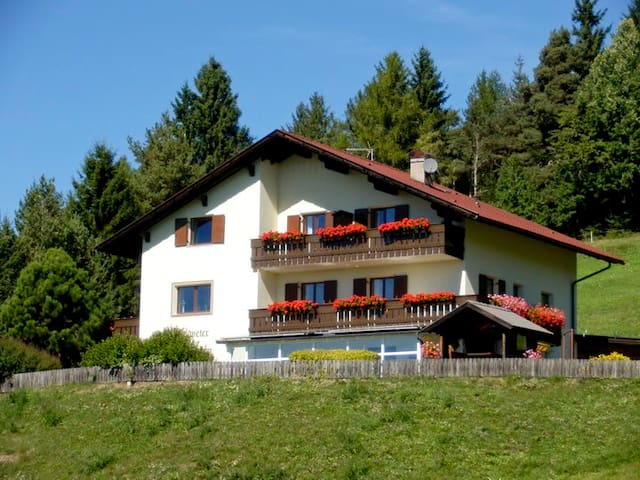 Garni Waldpeter - bed & breakfast near Bolzano! - Gummer