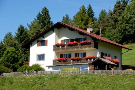 Garni Waldpeter - bed & breakfast near Bolzano! - Gummer - Bed & Breakfast