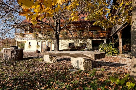 Vineyard cottage Majzelj, room 1 - Šentjernej