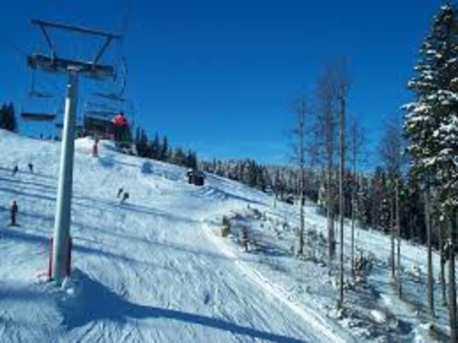 Rogla slopes