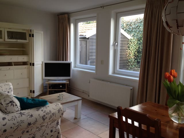 Privat summerhouse, 1 min from the beach - Zandvoort - Cabaña