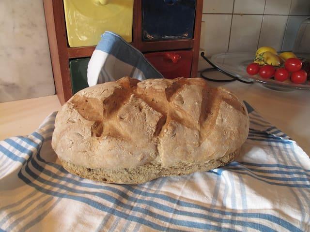 Il mio pane - my bread