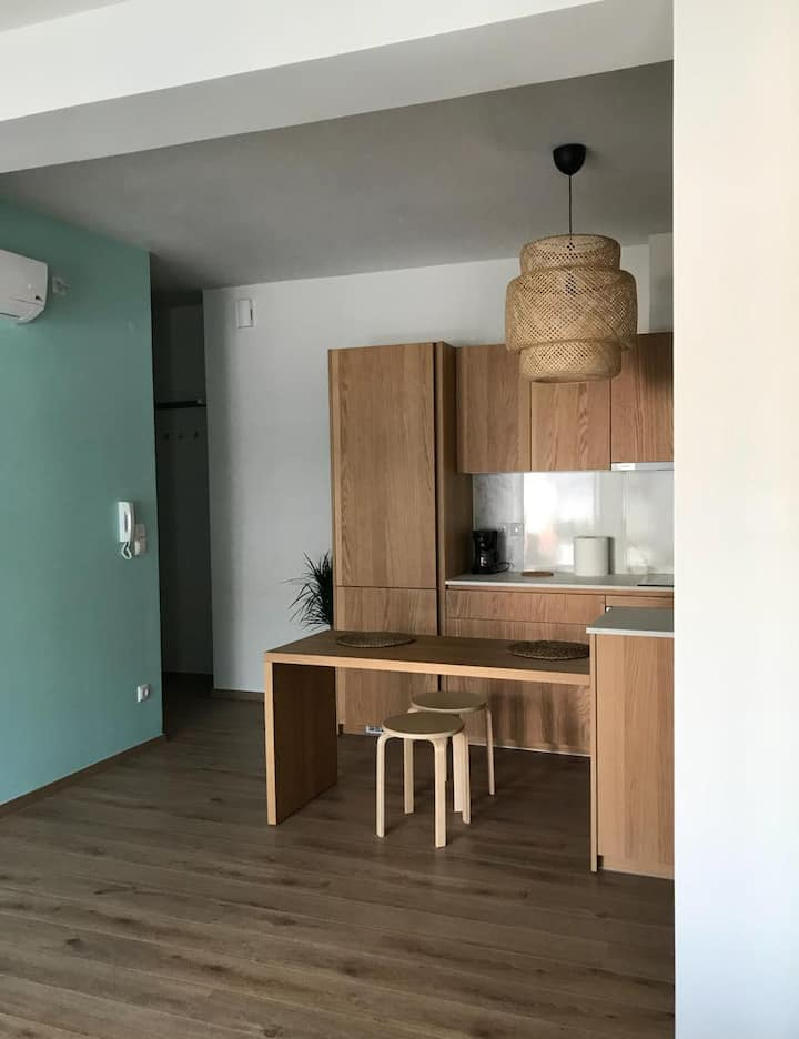 CENTRAL JUST RENOVATED FLAT