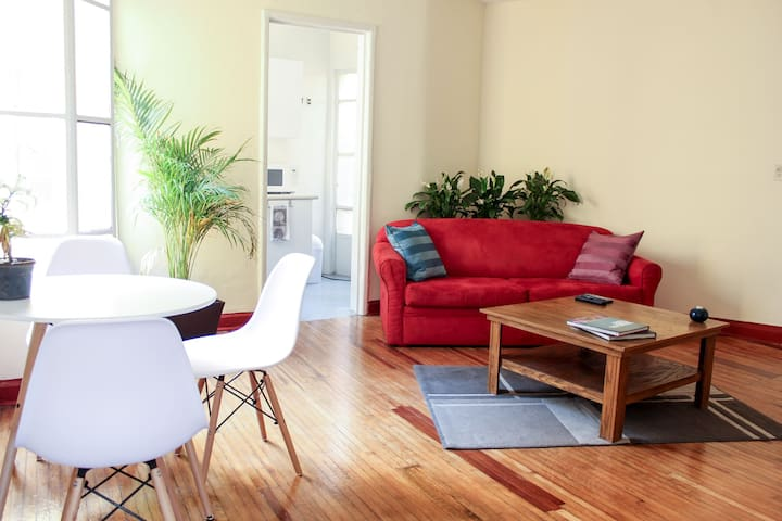 Full of natural light, lovely and cozy in Condesa