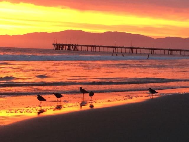 Oceanfront Beach Retreat Marina Del Rey's Finest