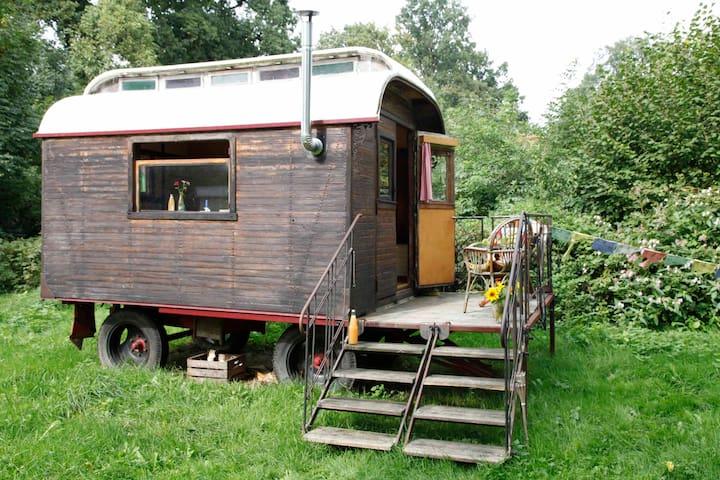 Geheimtipp, wunderschöner kleiner Zirkuswagen - Wenzendorf - Campingvogn