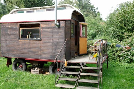 Geheimtipp, wunderschöner kleiner Zirkuswagen - Wenzendorf - Wohnwagen/Wohnmobil