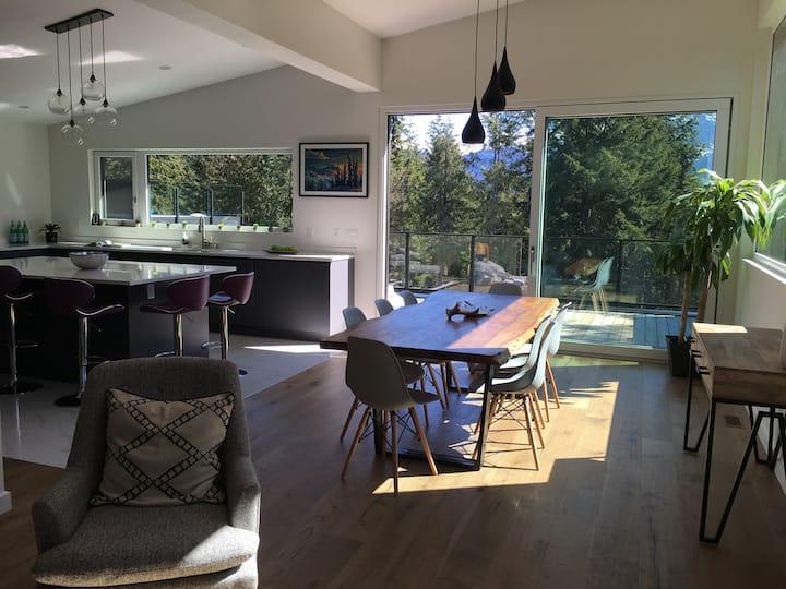4/5BD, hot tub bright pet friendly modern house