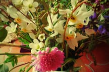 Flore de printemps