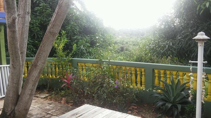 Casa Felicidad - Mango House