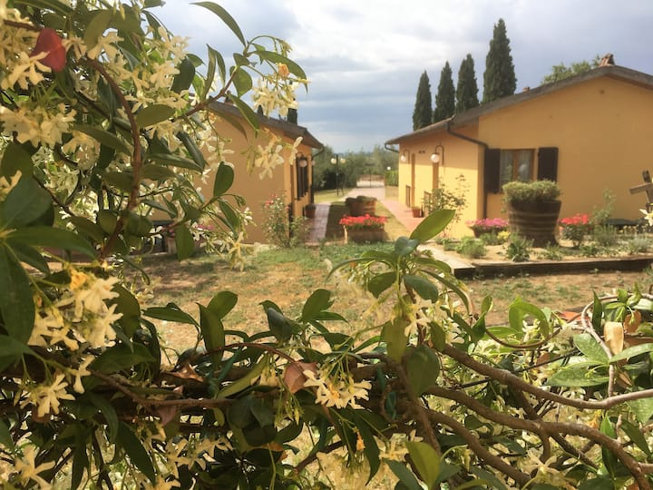 Menta, charming apartment for 2 persons