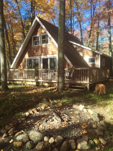 Pet-Friendly Lake Michigan Chalet - Harbor Springs - House