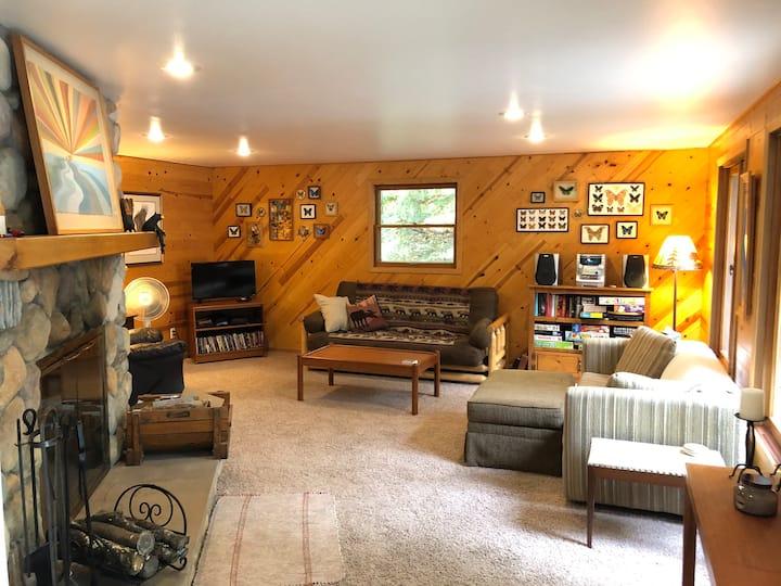 Serene Northwoods Cabin on Lake Lucerne