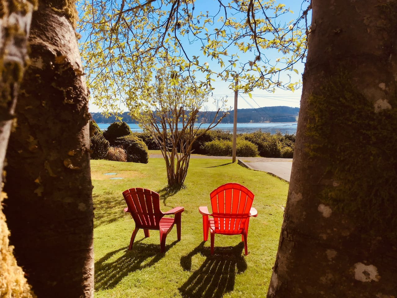 Enjoy the ocean view seated in our red Adirondack chairs.  This is at the side of our house for your enjoyment.  You can walk down to the road and across to the beach access from this area.If it is too cold in winter, we have blankets !
