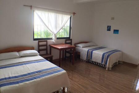 La Punta Bedroom w/ Rooftop Pool, Casa Rosita 5