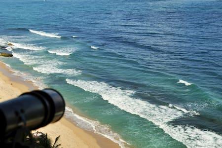 Amazing Ocean View Apartment in Condado - San Juan - San Juan - Lejlighed