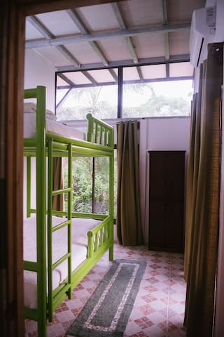 jungle view from inside your room. big windows to let you see more