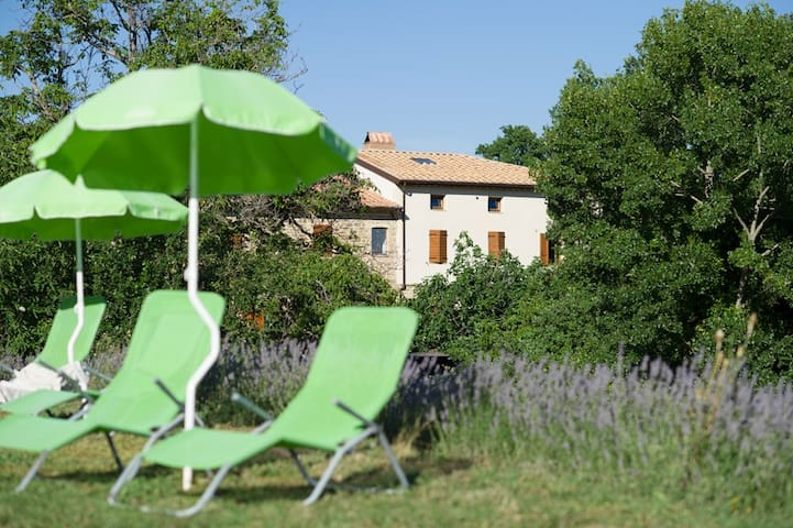Charming Family Apartment at rustic B&B with pool - Assise - Bed & Breakfast