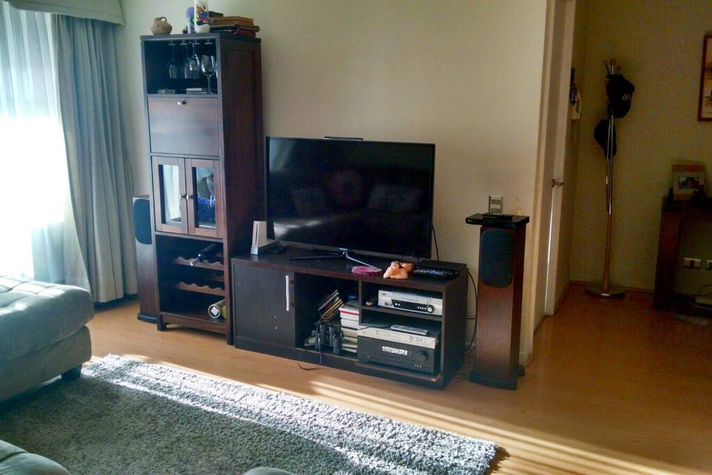 Smart TV, Cable, DVD Player, Blue Ray Player, Audio Profesional