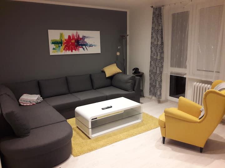 Nový Jičín, pokoj v panelovém domě